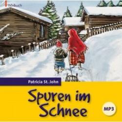 Spuren im Schnee (CD MP3)