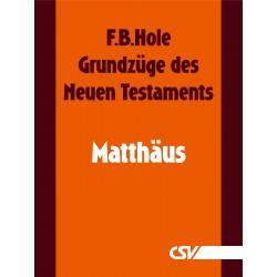 Grundzüge des Neuen Testaments - Matthäus (E-Book)