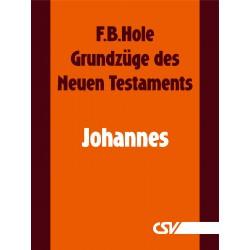 Grundzüge des Neuen Testaments - Johannes (E-Book)