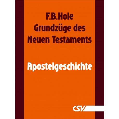 Grundzüge des Neuen Testaments - Apostelgeschichte (E-Book)