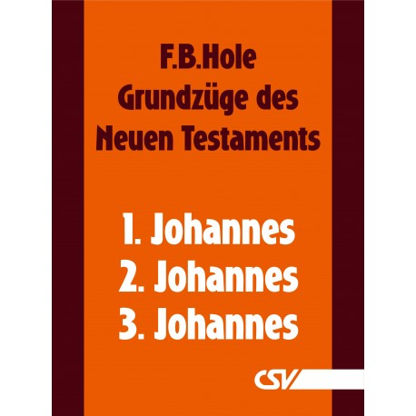 Grundzüge des Neuen Testaments - 1., 2. & 3. Johannes (E-Book)