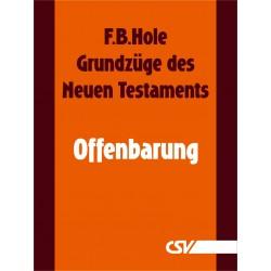 Grundzüge des Neuen Testaments - Offenbarung (E-Book)