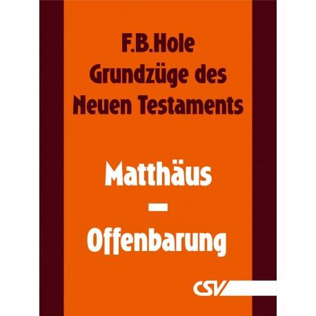 Grundzüge des Neuen Testaments komplettes NT (E-Book)