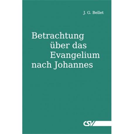 Betrachtung über das Evangelium nach Johannes (E-Book)