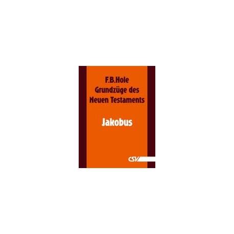 Grundzüge des Neuen Testaments - Jakobus (E-Book)