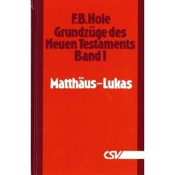Grundzüge des Neuen Testaments (Bd. 1: Matthäus - Lukas)