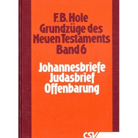 Grundzüge des Neuen Testaments (Bd. 6: Johannesbr. - Offenbarung