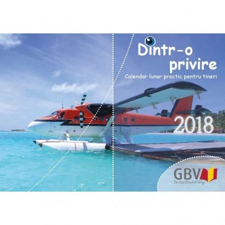 EinBlick 2018 (Rumänisch)