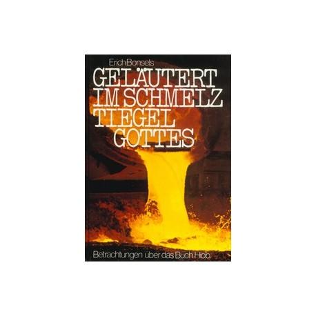 Geläutert im Schmelztiegel Gottes (kostenloses E-Book)