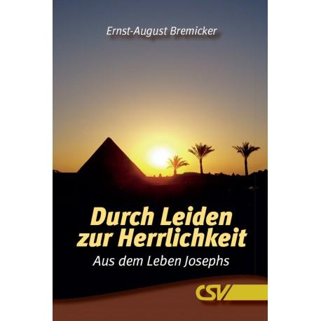 Durch Leiden zur Herrlichkeit (E-Book)