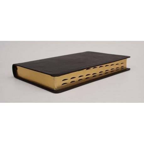Standardbibel, Leder, Goldschnitt