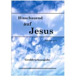 Hinschauend auf Jesus (Großdruck)