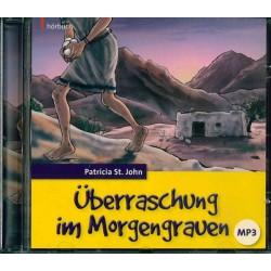 Überraschung im Morgengrauen (Hörbuch, MP3-CD)