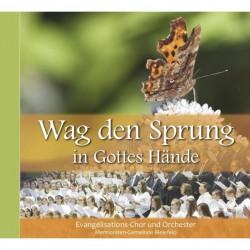 Wag den Sprung in Gottes Hände (CD)