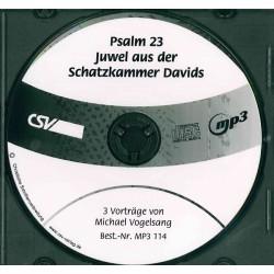 Psalm 23 Juwel aus der Schatzkammer Davids (MP3)