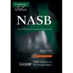 Englische Bibel, Leder, braun (NASB)