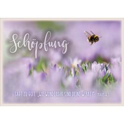 Postkarte - Schöpfung Hummel
