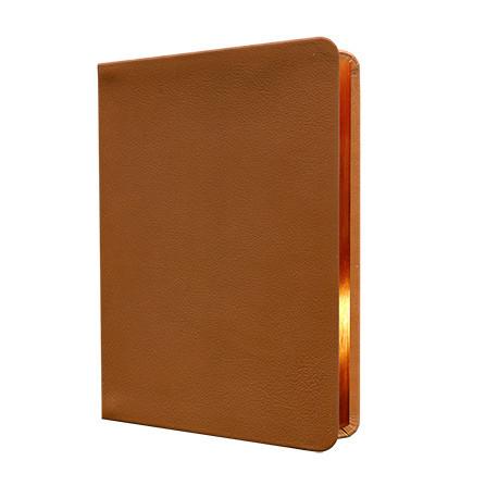 Standardbibel, Leder, hellbraun, Goldschnitt, Notizseiten