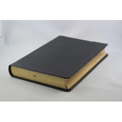Standardbibel, Leder, Goldschnitt,