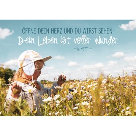 Postkarte - Voller Wunder